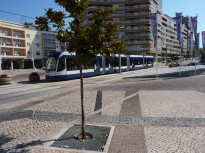 Almada_Metro Sul Tejo (14)